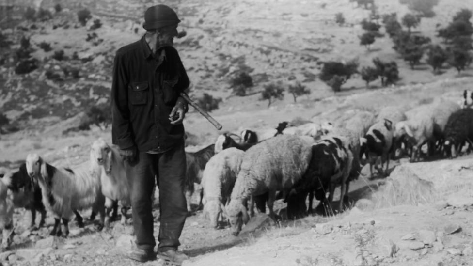 Shepherd.Still002